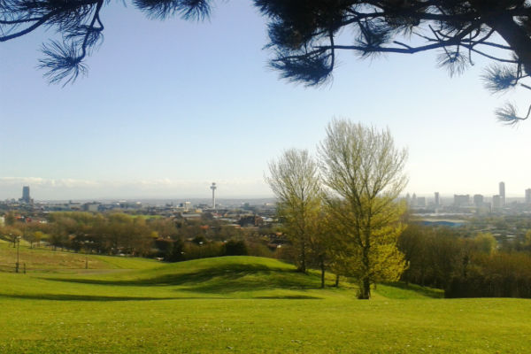 Liverpool's skyline from Everton Park on Mayday 2013. Pic: Share the City